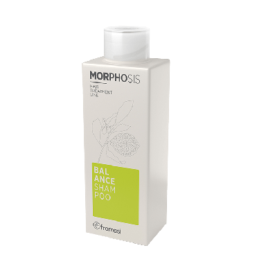 Framesi Morphosis Balance Shampoo 250ml